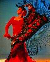 Фламенко обучение