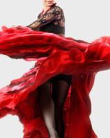 Основы танца фламенко