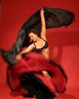 Андалузский танец